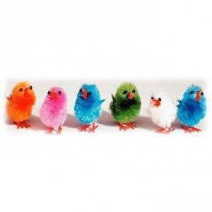 Les Mini Poussins multicolores
