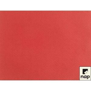Set de table - Rouge - 30x40cm