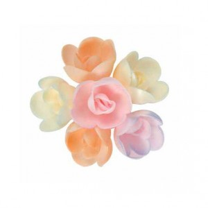 Assortiment Roses nuancées - x72