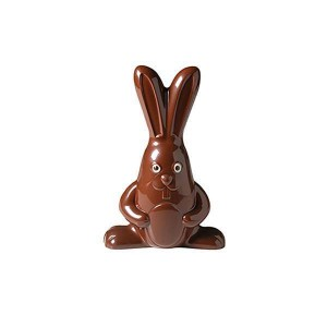 Moule Poly. Grand Lapin