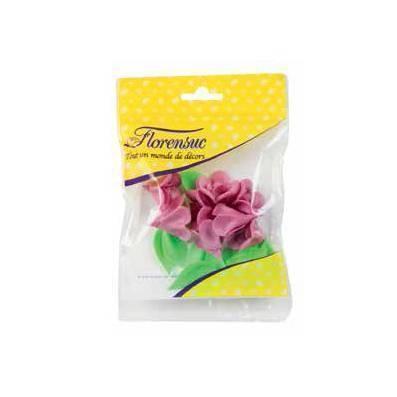 Violettes + feuilles - x7