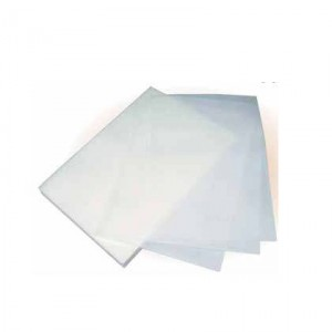 Feuille azyme lisse - x25